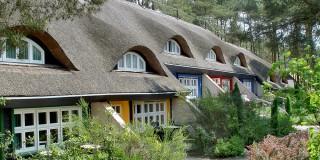 Ferienhaus Typ II mit Terrasse