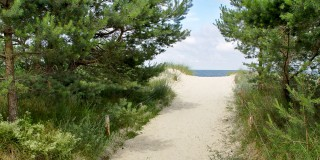 Strandaufgang vom Ferienhaus am Strand