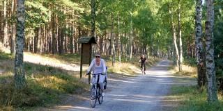 Radwegenetz auf der Insel Usedom